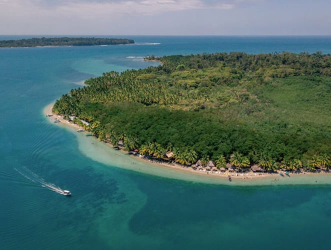 Starfish Beach, Isla Colon