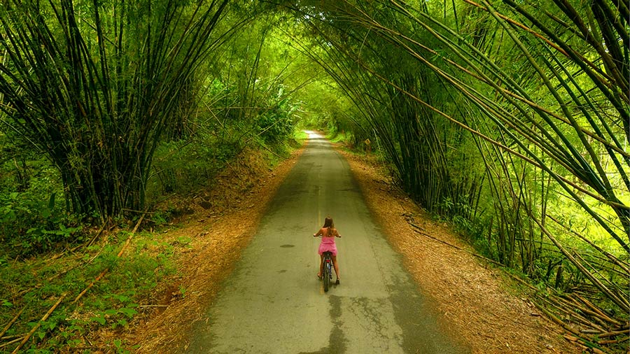 Renting a Bicycle on Isla Colon (And Where to Go)