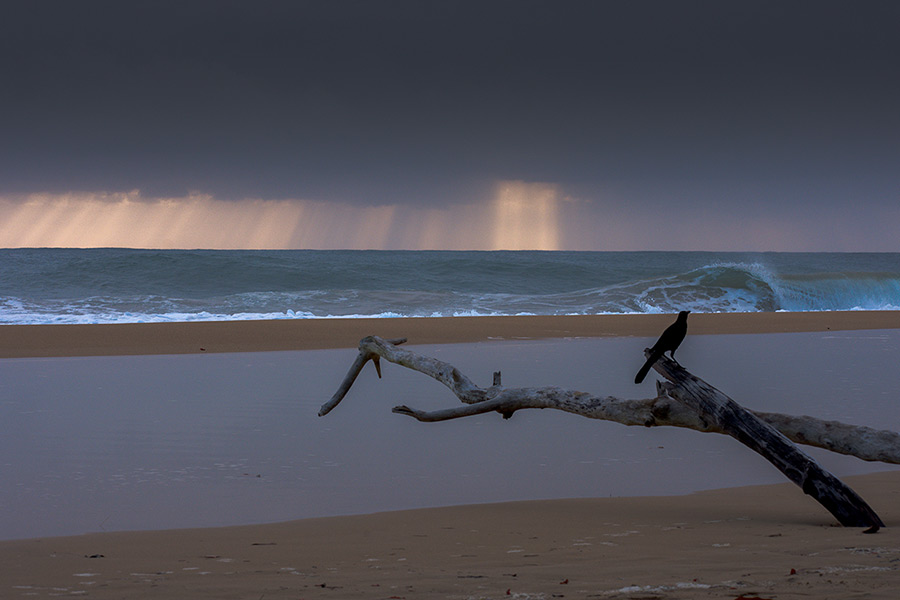 "Does Bocas del Toro Have a ""Rainy Season""?"